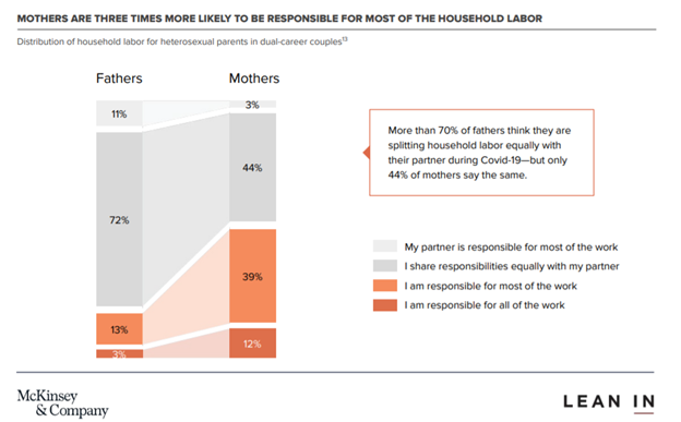 Distribution of household labour